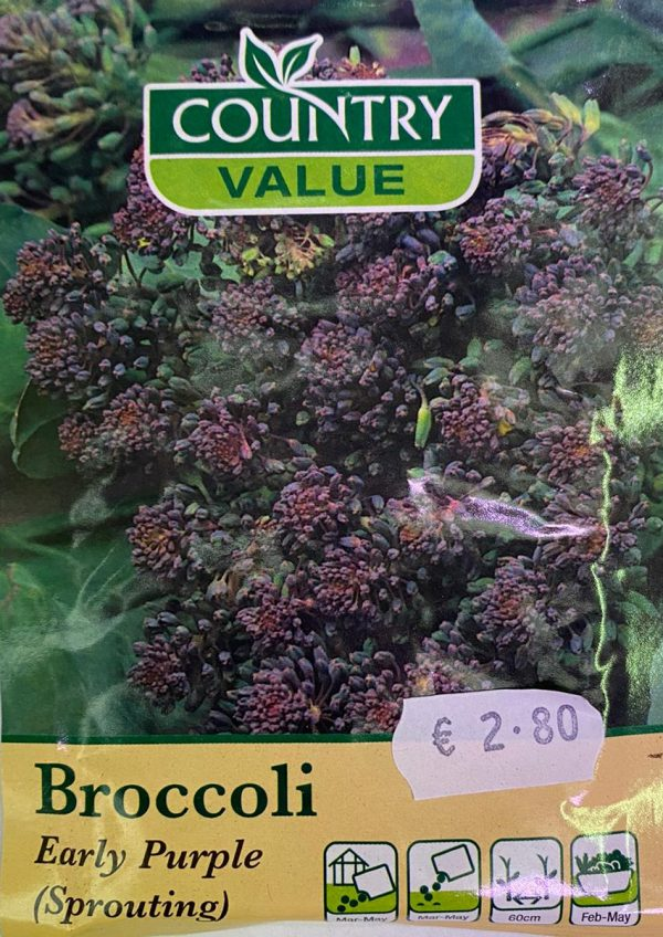 Country Value Broccoli Early Purple (Sprouting) Seeds
